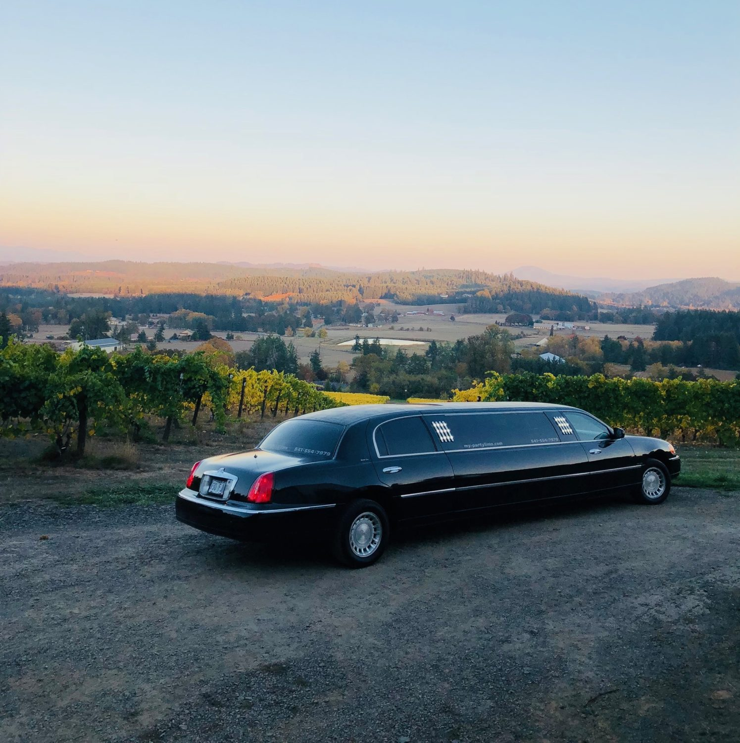 Limo Sunset